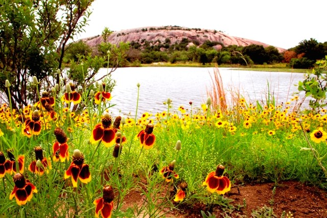 Blog-Enchanted Rock.jpg
